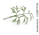 close up shot of branch of... | Shutterstock . vector #1158873736