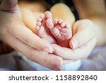 tiny feet of a newborn baby... | Shutterstock . vector #1158892840