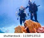 a beautiful girl diver shows... | Shutterstock . vector #1158913513