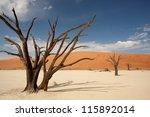 Deadvlei    Namib Desert ...