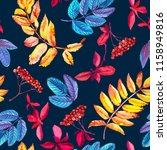 seamless pattern with red rowan ... | Shutterstock . vector #1158949816