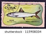 Small photo of CUBA - CIRCA 1971: A stamp printed in Cuba dedicated to sport fishing, shows bonefish, Albula vulpes, circa 1971