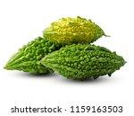 bitter melon  bitter gourd on... | Shutterstock . vector #1159163503