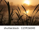 Misty Lake On A Summer