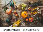 thanksgiving day.  autumn fruit ... | Shutterstock . vector #1159395379