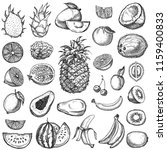 set of fruits. hand drawn... | Shutterstock .eps vector #1159400833