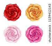 set of roses on a white... | Shutterstock .eps vector #1159412143