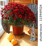 Bunch of chrysanthemums, pumpkin and a lantern on a balcony - stock photo