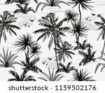 beautiful botanical vector... | Shutterstock .eps vector #1159502176