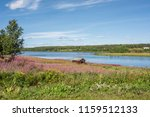 view from pajala in northern... | Shutterstock . vector #1159512133