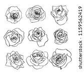 set of beautiful outline... | Shutterstock .eps vector #1159562419