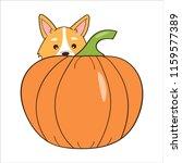 halloween pumpkin and corgi dog ... | Shutterstock .eps vector #1159577389