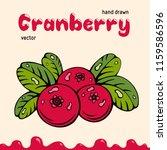 cranberry vector illustration ... | Shutterstock .eps vector #1159586596