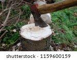 detail of a lumberjack ax in a... | Shutterstock . vector #1159600159