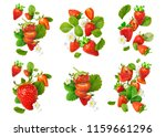 collection with flying fresh... | Shutterstock . vector #1159661296