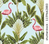 tropical vintage pink flamingo... | Shutterstock .eps vector #1159662883