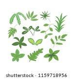 green leaves botanical... | Shutterstock .eps vector #1159718956