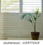 luxury white indoor plantation... | Shutterstock . vector #1159772419