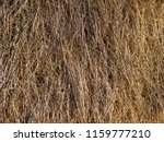 close up dry straw texture... | Shutterstock . vector #1159777210