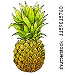vector illustration  hand drawn ...   Shutterstock .eps vector #1159815760