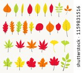 colorful autumn leaves... | Shutterstock .eps vector #1159831516