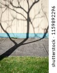 the shadow of a skeletal tree... | Shutterstock . vector #1159892296