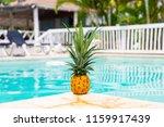pineapple in the pool.  | Shutterstock . vector #1159917439