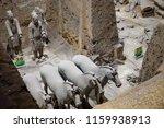 xian   jun 30 terracotta army... | Shutterstock . vector #1159938913