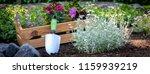 gardening. crate full of... | Shutterstock . vector #1159939219
