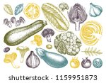 vector collection of hand... | Shutterstock .eps vector #1159951873