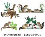 family of chipmunks outdoors in ... | Shutterstock .eps vector #1159984933