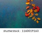 two branches of autumn leaves ... | Shutterstock . vector #1160019163