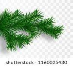 pine tree branch. vector... | Shutterstock .eps vector #1160025430