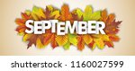 autumn foliage on the white... | Shutterstock .eps vector #1160027599