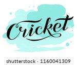 hand drawn cricket lettering... | Shutterstock .eps vector #1160041309