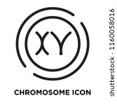 chromosome icon vector isolated ... | Shutterstock .eps vector #1160058016