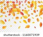 oak  maple  wild ash rowan... | Shutterstock .eps vector #1160071939