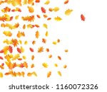 oak and maple leaf cool... | Shutterstock .eps vector #1160072326