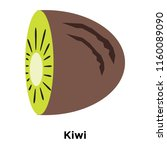 kiwi icon vector isolated on... | Shutterstock .eps vector #1160089090