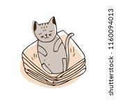 cute naughty cat lying on pile... | Shutterstock .eps vector #1160094013