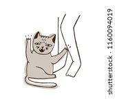 aggressive cat scratching leg... | Shutterstock .eps vector #1160094019