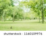 blurred of green trees lawn... | Shutterstock . vector #1160109976