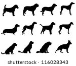 Stock vector dogs 116028343