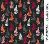 fern frond herbs  tropical... | Shutterstock .eps vector #1160314099