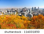 montreal during foliage season  ... | Shutterstock . vector #116031850