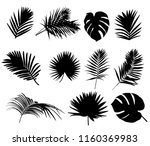set of silhouettes of palm leaf | Shutterstock .eps vector #1160369983