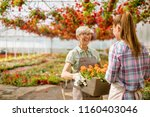 portrait of senior and young... | Shutterstock . vector #1160403046