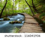 boardwalk in the park | Shutterstock . vector #116041936