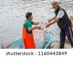 santa margarita   italy   may...   Shutterstock . vector #1160443849