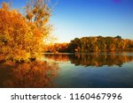 golden autumn trees and lake.... | Shutterstock . vector #1160467996